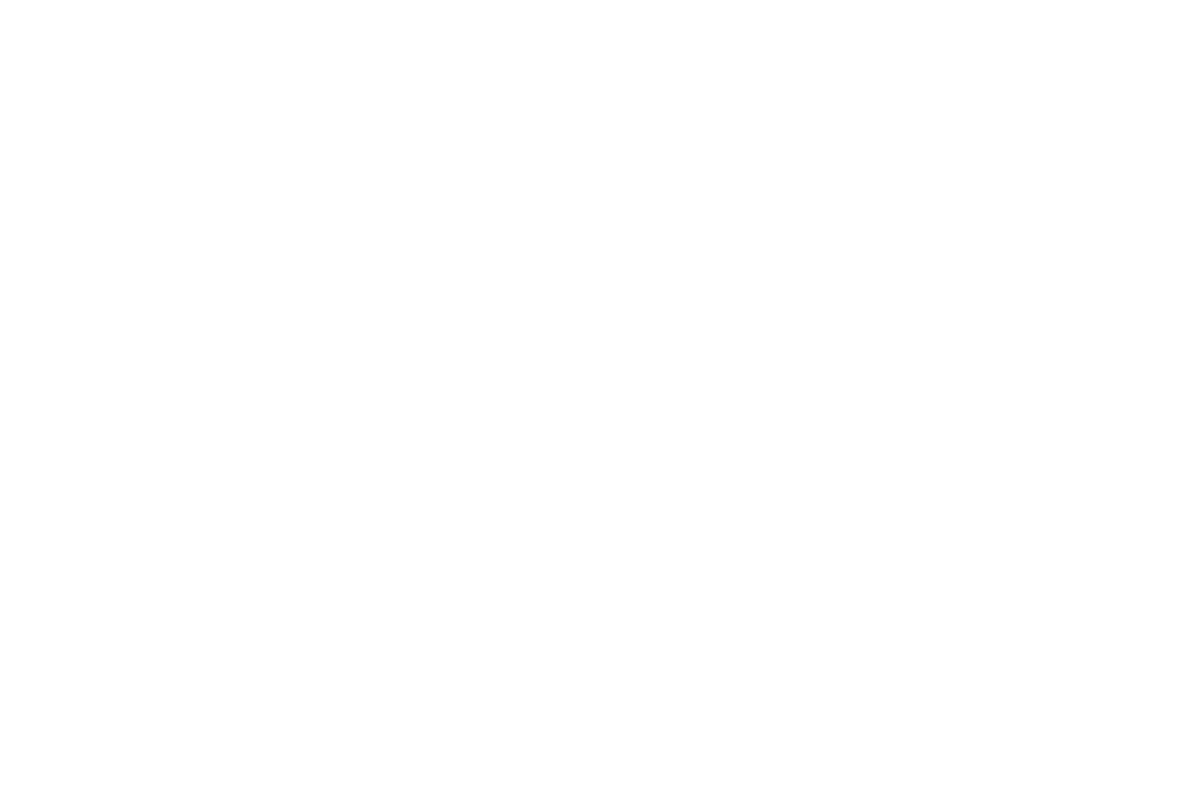 Raul Gori